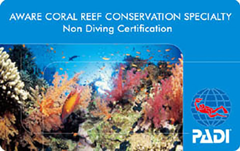 AWAREサンゴ礁の保護